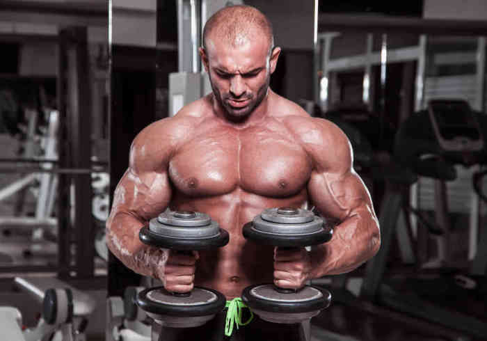 Body builder performing exercise for biceps with weights in both hands - Does MK-677 Cause Hair Loss?